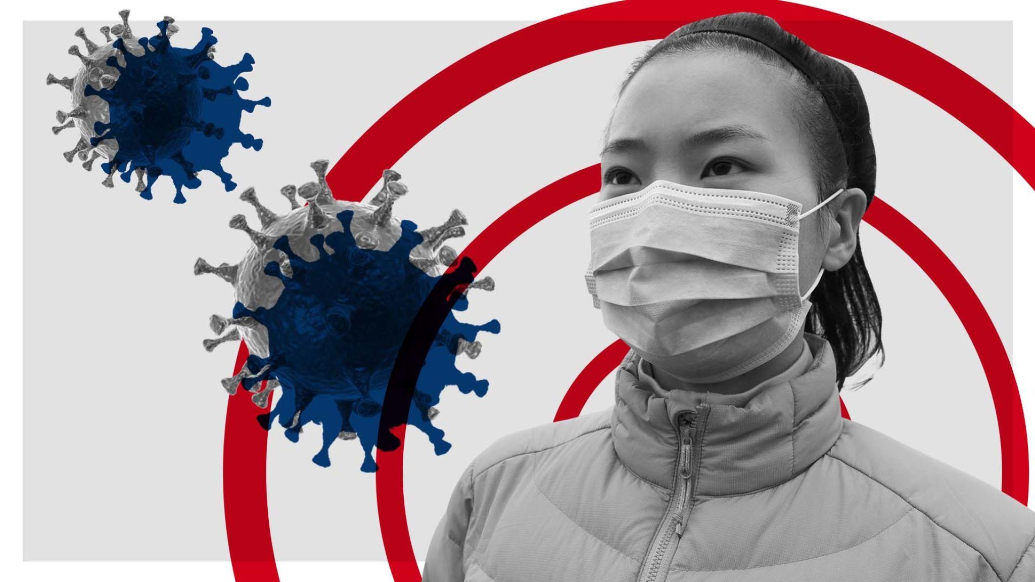 معلومات مهمة عن فيروسات كورونا